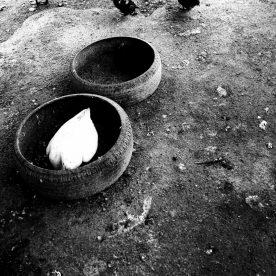 リン・チャウェン ARTWORKS