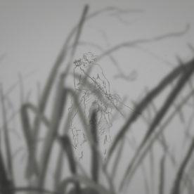 チュアン・ホー ARTWORKS